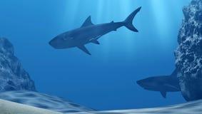 鲨鱼群水下与太阳光芒和石头在深蓝色海 免版税库存照片