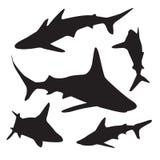 鲨鱼被设置的传染媒介剪影 向量例证