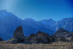 鲨鱼飞翅和惠特尼山脉阿拉巴马小山的 免版税库存照片