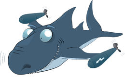 鲨鱼鱼雷 图库摄影