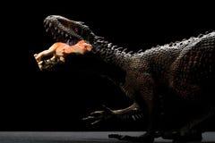 鲨齿龙玩具捉住更小的恐龙 免版税库存照片