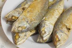 鲭鱼火泰国食物 库存照片