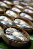 鲭鱼 图库摄影