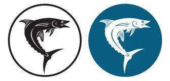 鲭鱼 免版税图库摄影