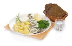 鲱鱼、伏特加酒土豆小玻璃和面包 免版税库存照片