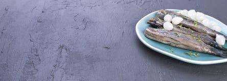 鲱鱼内圆角用在一块蓝色板材,一个传统荷兰纤巧的葱 可口海鲜膳食 复制空间 平的位置 长期 免版税图库摄影