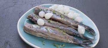 鲱鱼内圆角用在一块蓝色板材,一个传统荷兰纤巧的葱 可口海鲜膳食 复制空间 平的位置 长期 免版税库存图片