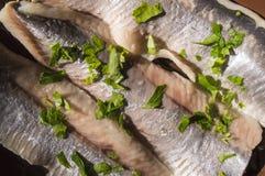 鲱鱼的内圆角 免版税库存照片