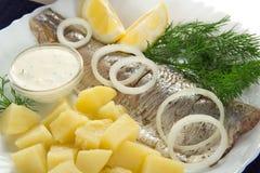 从鲱鱼的鲜美早餐用葱和柠檬 免版税库存图片