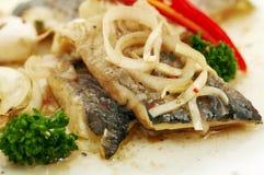鲱鱼 免版税图库摄影