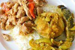 鲶鱼咖喱和辣混乱炸鸡与蓬蒿在米生叶 免版税库存照片