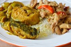 鲶鱼咖喱和辣混乱炸鸡与蓬蒿在米生叶 库存图片