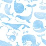 鲸鱼。无缝的样式。水彩背景。无缝的啪答声 免版税库存图片