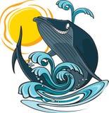 鲸鱼和水 库存图片