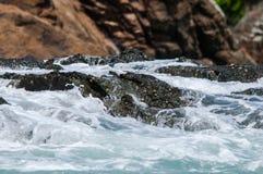 鲸鱼海岛 库存图片