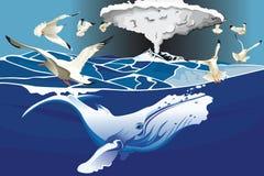 鲸鱼游泳在海洋下 免版税库存图片
