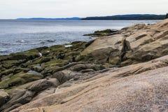 鲸鱼观看的斑点在魁北克,加拿大 免版税库存照片