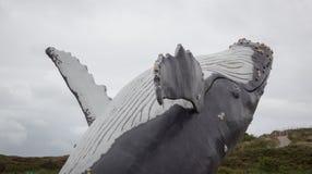 鲸鱼跳出水 免版税库存照片