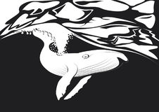 鲸鱼飞行在海洋 图库摄影