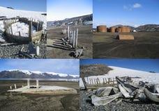 鲸鱼骨头和捕鲸小船南极洲拼贴画  免版税库存照片