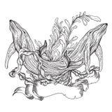 鲸鱼,海洋植物、海草和丝带横幅的汇集 葡萄酒套黑白手拉的海洋生物 免版税库存照片