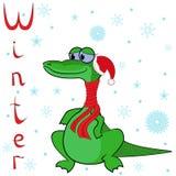 鳄鱼为什么在冬天是很冷的? 免版税库存图片
