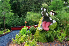 鳄鱼修剪的花园 免版税图库摄影