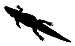 鳄鱼剪影 免版税库存照片