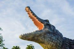 鳄鱼和天空 库存照片