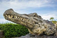 鳄鱼和天空 图库摄影