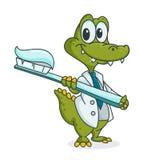 鳄鱼和牙刷 库存图片