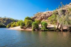 鳄鱼在沙子追踪在凯瑟琳河峡谷,澳大利亚 免版税库存图片