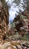 鳄鱼峡谷 图库摄影
