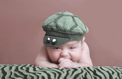鳄鱼帽子 库存图片