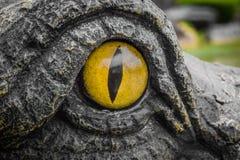 鳄鱼的黄色眼睛 免版税图库摄影