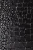 鳄鱼皮肤 免版税库存照片