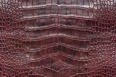鳄鱼皮革样品 免版税图库摄影