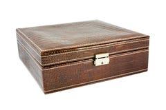 鳄鱼皮革棕色箱子 库存照片