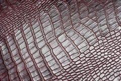 鳄鱼皮革纹理 库存图片