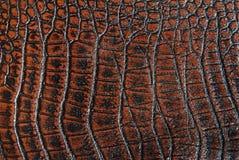 鳄鱼皮革 图库摄影