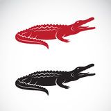 鳄鱼设计的传染媒介图象 免版税库存照片