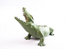 鳄鱼鳄鱼 免版税图库摄影