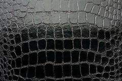 鳄鱼黑光滑的人造革 库存照片