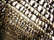 鳕鱼在机架的干鱼干燥在Svolvaer 库存图片