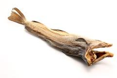 鳕鱼干燥鱼 免版税图库摄影