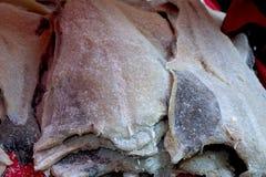 鳕鱼 免版税库存图片