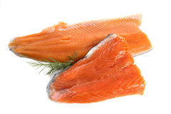 鳟鱼和三文鱼内圆角 免版税库存照片