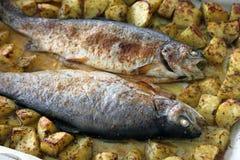 鳟鱼用土豆 免版税库存照片