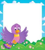 鸟主题框架   免版税图库摄影