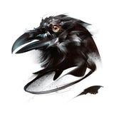 鸟乌鸦被绘的颜色画象在白色背景的在边 库存例证